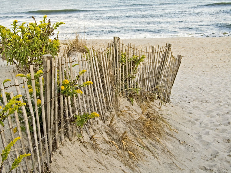Sand Dunes and Fence stock photo