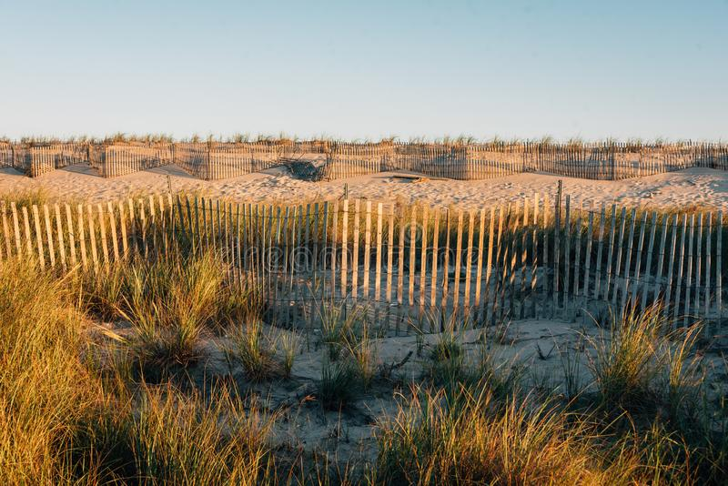Sand dunes and fences at Fire Island National Seashore, New York royalty free stock photo