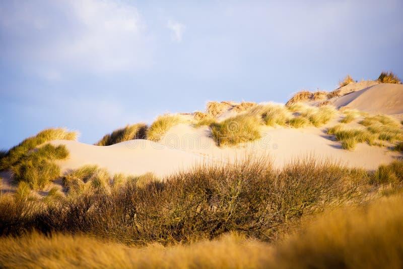 Download Sand Dunes Stock Image - Image: 34240191