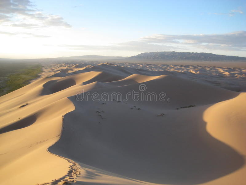 Sand dunes in the Gobi desert. Sunrise across the sand dunes of the Gobi desert in the south of Mongolia royalty free stock images