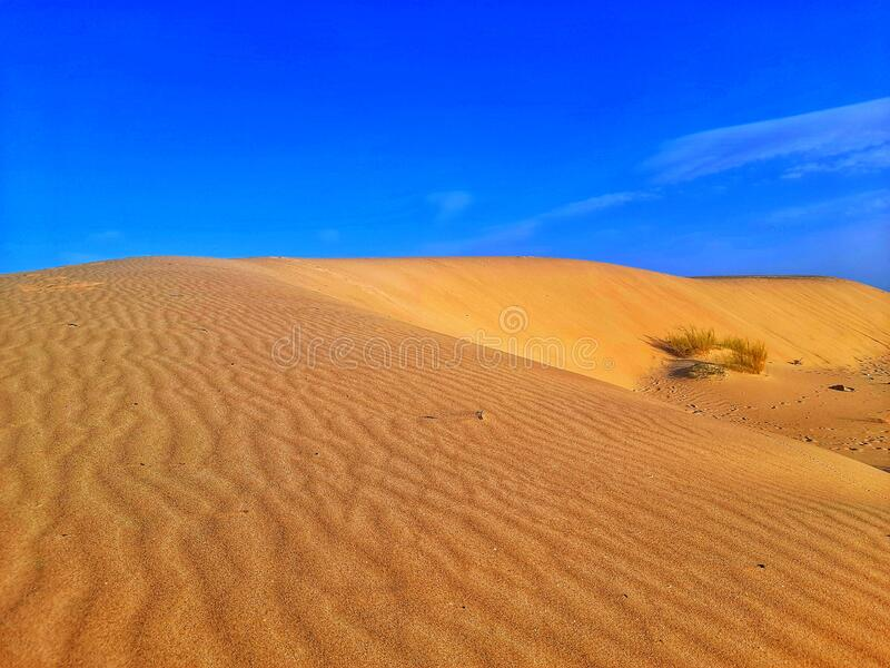 Sand dunes hill on desert amazing in Algeria Country royalty free stock photography