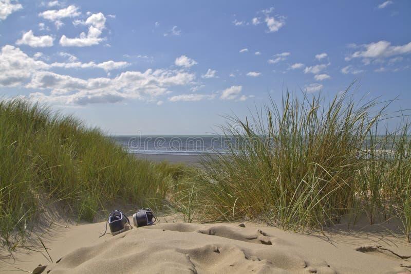 Download Sand dunes Landscape stock image. Image of sand, summer - 25381465