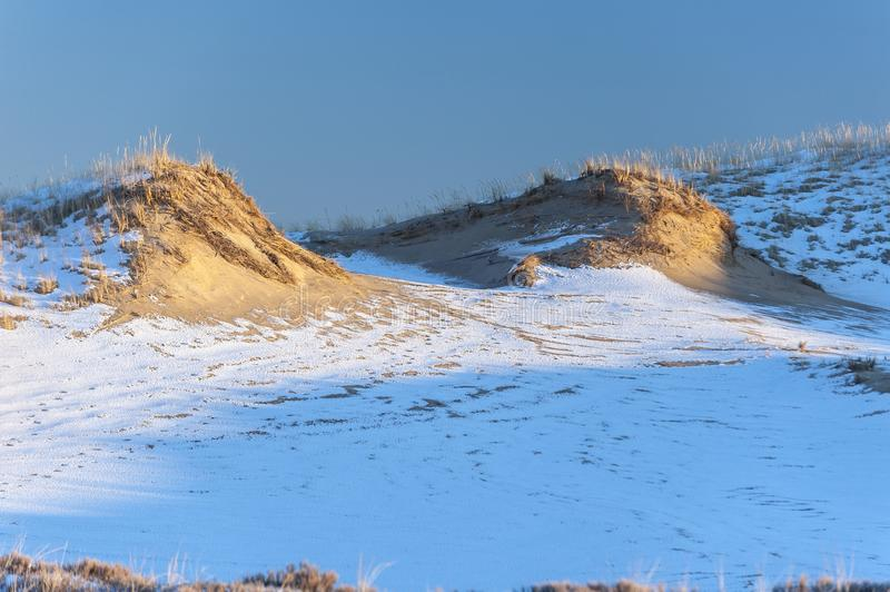 Sand dunes lit by late afternoon sun at Parker River National Wi. Ldlife Refuge royalty free stock photography