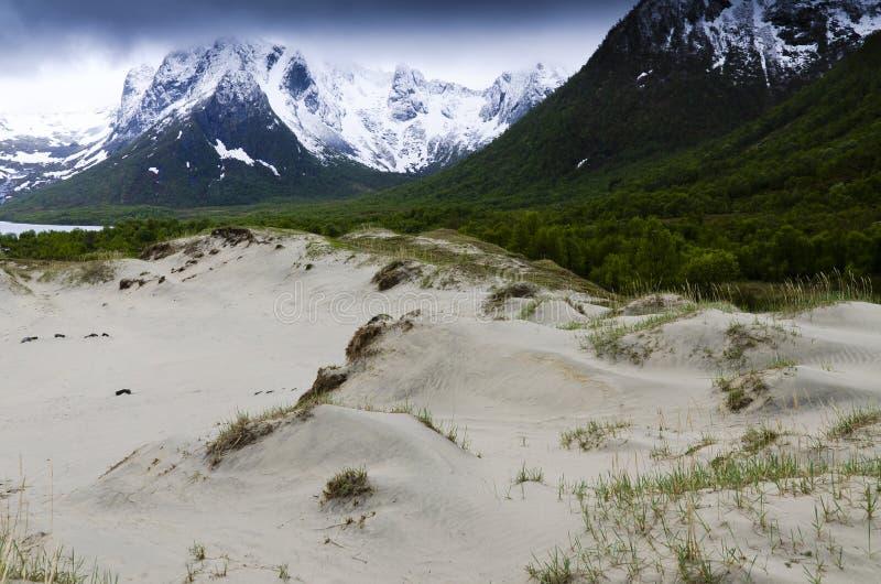 Download Sand Dunes In Lofoten Islands Stock Photo - Image: 19822058
