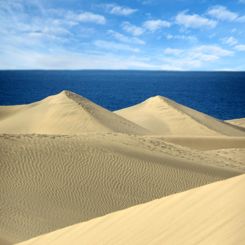 The Sand dunes Maspalomas of Gran Canaria, Canary Islands stock photography