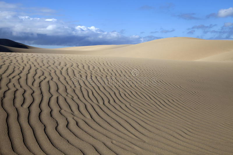 Sand Dunes in Maspalomas royalty free stock images