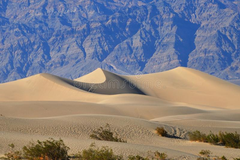 Download Sand Dunes In Mesquite Flat Sand Dunes, Death Vall Stock Photo - Image: 31369644