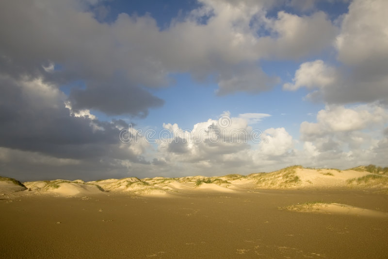 Sand dunes in morning light stock images