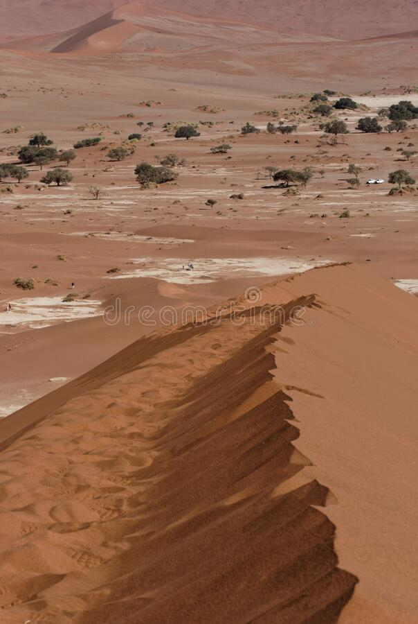 Sand dunes of Namib desert, near Sossusvlei, Namibia royalty free stock photo