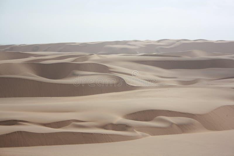 Sand dunes in the Namib desert royalty free stock image