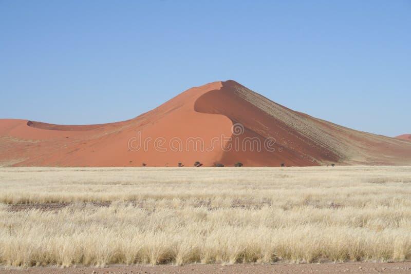 Sand dunes, Namibia royalty free stock photos