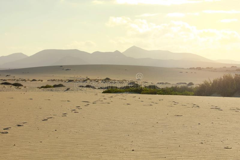 Sand dunes near Corralejo with volcano mountains on the background at sunset, Fuerteventura, Canary Islands stock photo