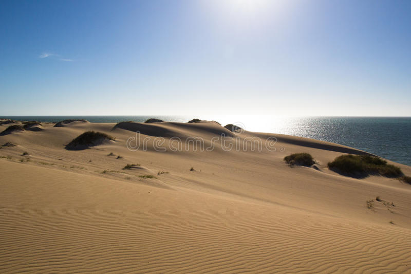 Sand Dunes Ningaloo royalty free stock photos