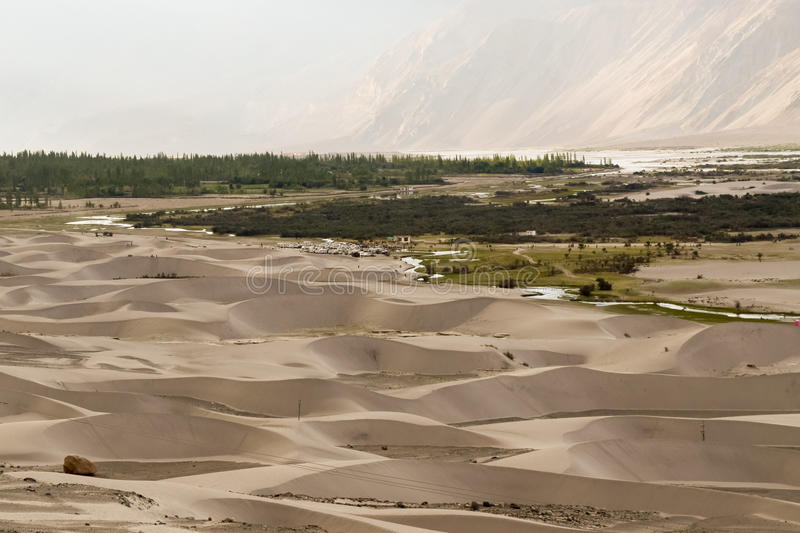 Sand dunes in Nubra valley cold desert of ladakh. Nubra valley is high altitude cold desert in ladakh region of Himalayas. Nubra river cuts through himalayan royalty free stock images