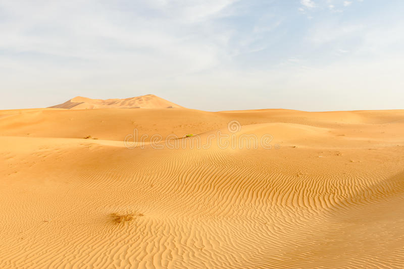 Sand dunes in Oman desert (Oman). Sand dunes in Rub al-Khali desert, Dhofar region (Oman stock photography