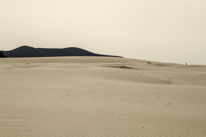 Sand dunes that are outlined forming a lunar landscape with gray sea and leaden winter sky. Sand dunes that are outlined forming a lunar landscape with gray sea stock photo