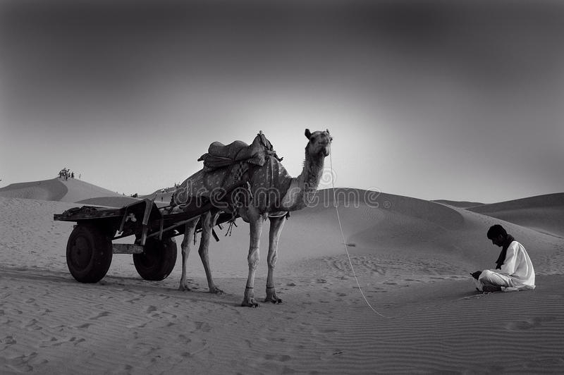 Download Sand dunes in Rajasthan editorial image. Image of tourism - 17919285