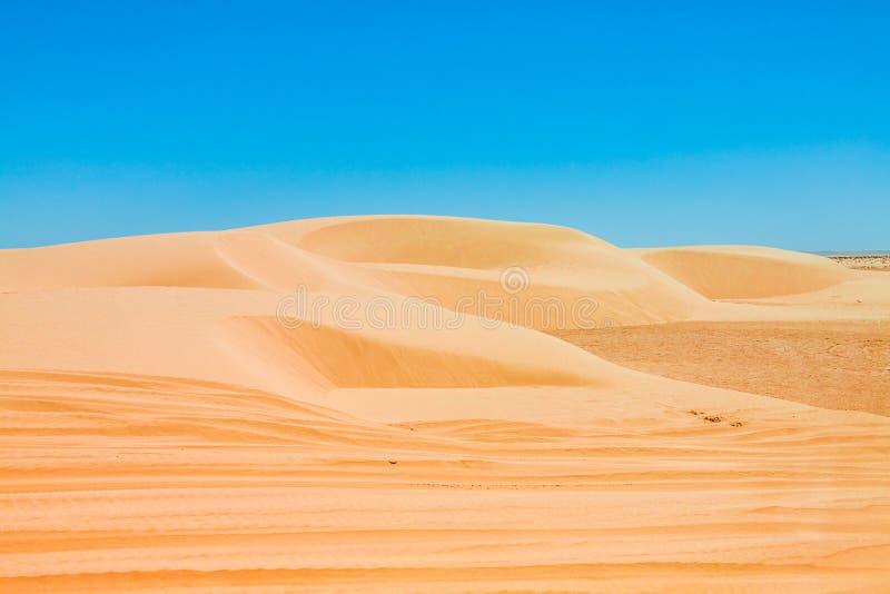 Sand dunes of Sahara desert near Ong Jemel in Tozeur,Tunisia. Sand dunes of Sahara desert near Ong Jemel in Tozeur,Tunisia royalty free stock image