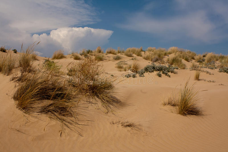 Sand dunes on Sampieri beach stock photography