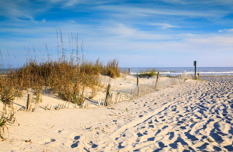 Sand Dunes Sea Oats and Erosion Fencing Folly Beach SC stock images