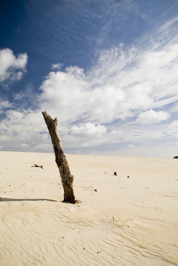 Sand Dunes and Sky. Large coastal sand dunes in Australia royalty free stock image