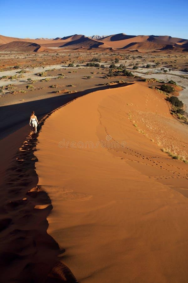Sand Dunes - Sossusvlie - Namibia stock photography