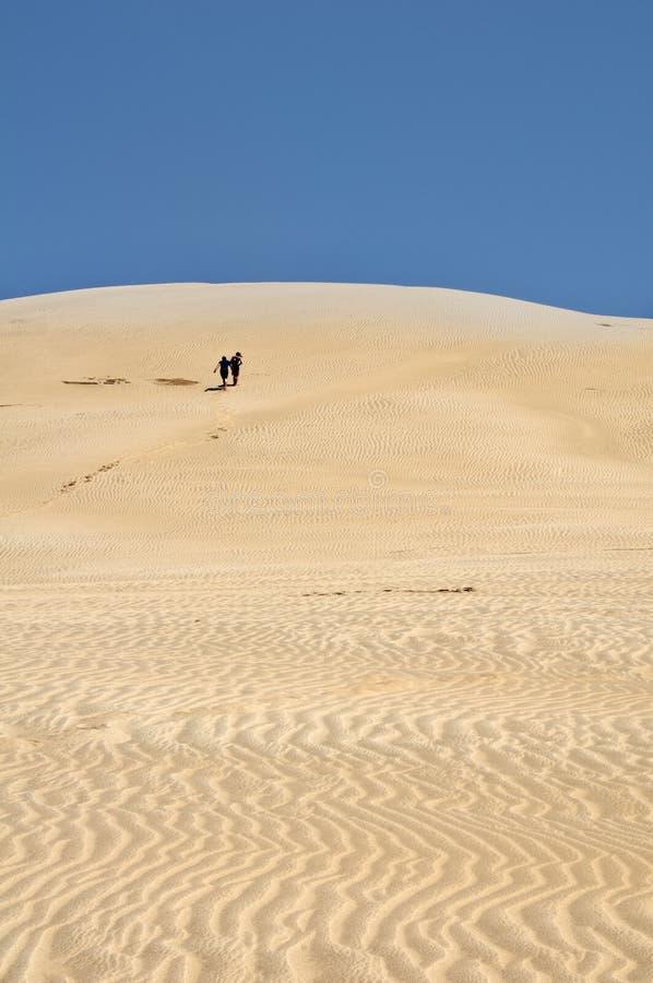 Free Sand Dunes - Te Paki Stream, New Zealand Royalty Free Stock Photography - 18357687