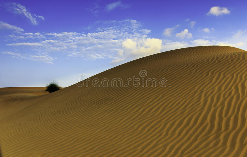 Sand Dunes Of Thar stock photos