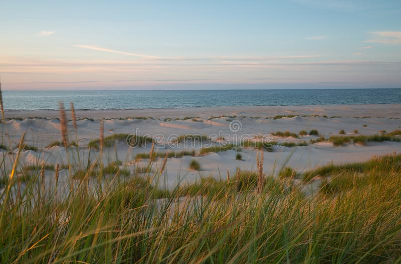 Sand dunes with vegetation in front of ocean photographed in sunset after a summers day in a national park royalty free stock image