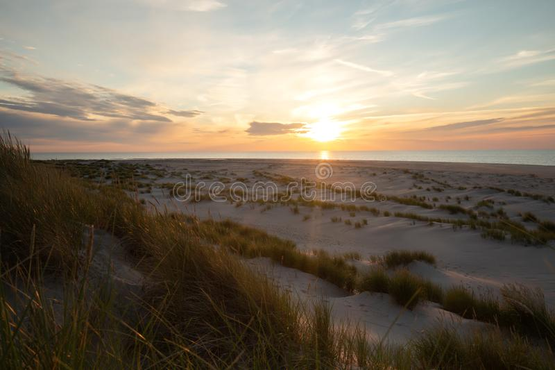 Sand dunes with vegetation in front of ocean stock images
