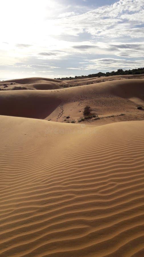 Sand dunes vietnam stock photos