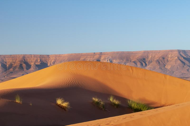 Sand dunes in the desert of Morocco royalty free stock photography