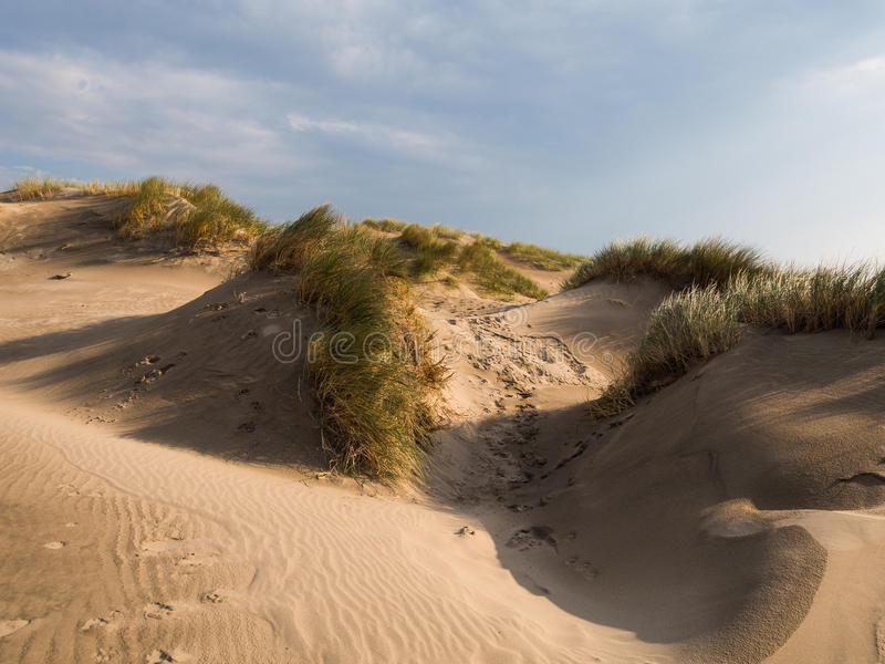 Sand Dunes at Ynyslas. Near Borth, Ceredigion, Wales royalty free stock photos