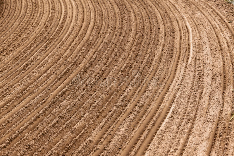 Download Sand Curved Track Grooves stock photo. Image of detail - 27888052