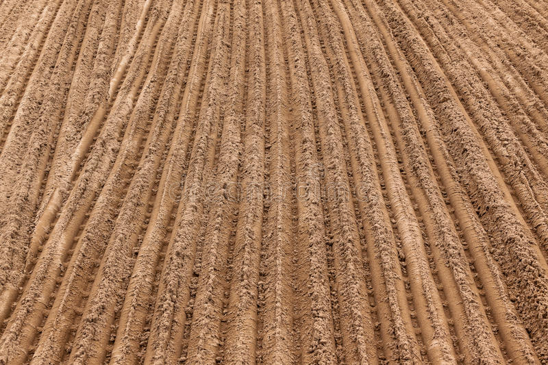 Download Sand Earth Track Grooves stock photo. Image of brown - 27888138