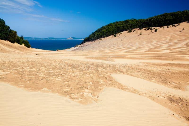 sand för strandblowcarlo regnbåge royaltyfri foto