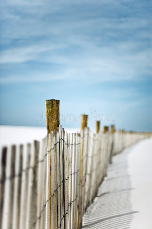 Download Sand Fence In The Dunes At The Beach Stock Photo - Image: 3802892