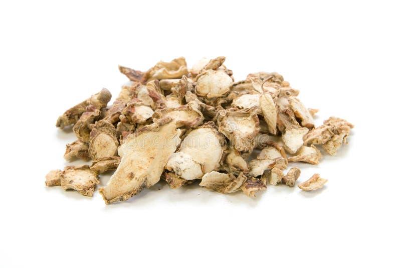 Sand Ginger. Aromatic Ginger, Resurrection Lily , Kaempferia galanga L on white background stock photo