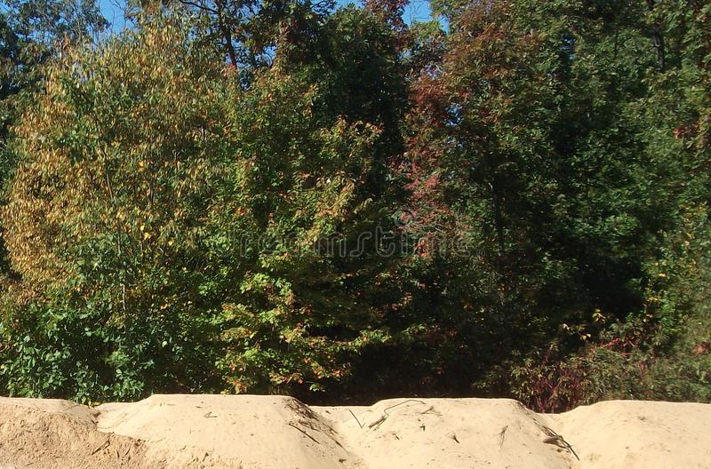 Outdoors, Trees, Sand Hills, Sky. Sand hills outside piled up next to the woods. Our ditches were dug out and the left over sand piled up royalty free stock photo