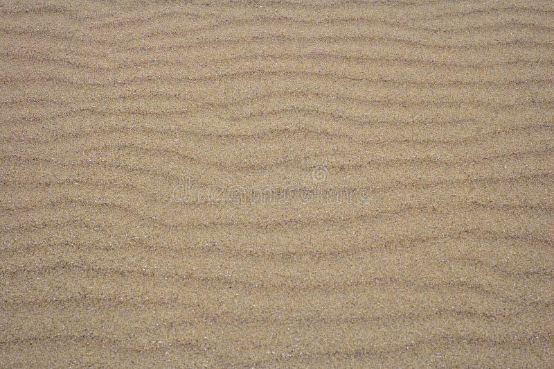 Sand-Kräuselungen für Hintergrund lizenzfreies stockfoto