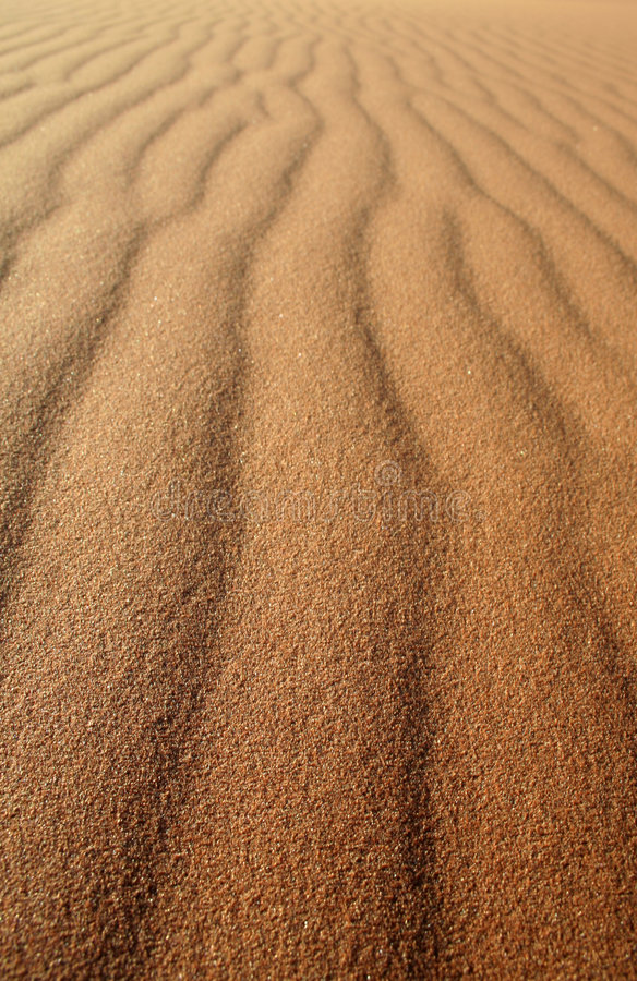 Sand Lines - Vertical