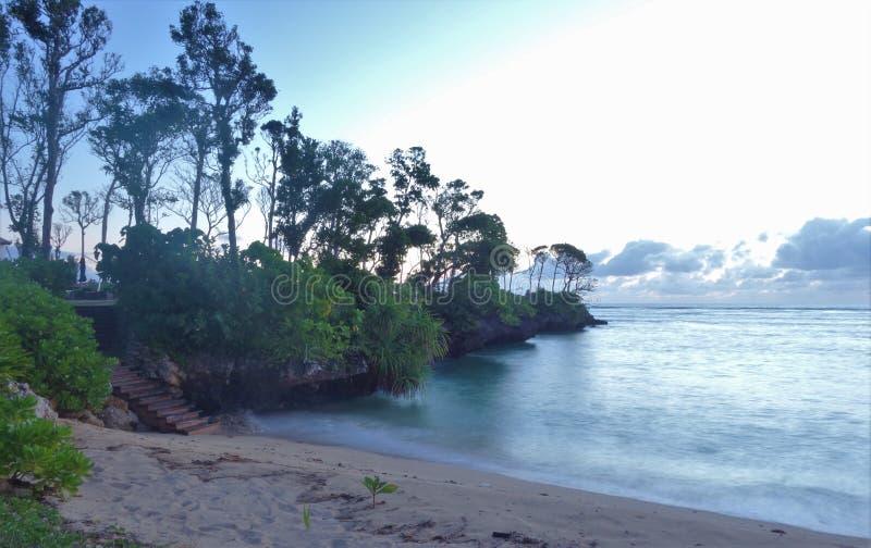Sand, Meer, Himmel und Bäume stockbild