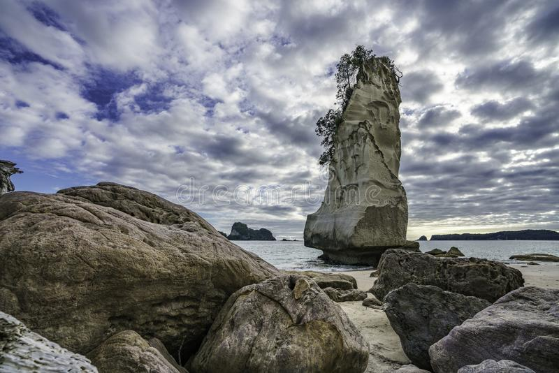 Sandstone rock monolith,cathedral cove,coromandel,new zealand 4. Sand and the mighty sandstone rock monolith in the water of cathedral cove,coromandel, new stock image
