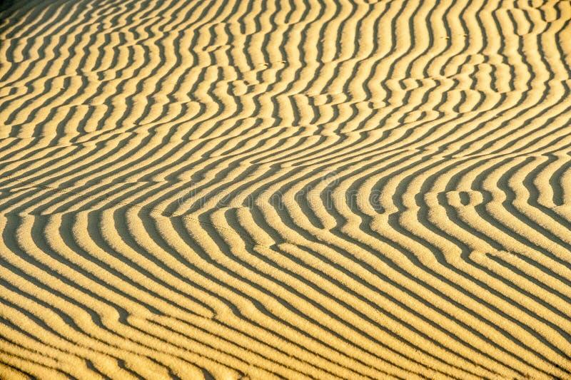 Sand modeller i efterrätten - sand dyner arkivbilder