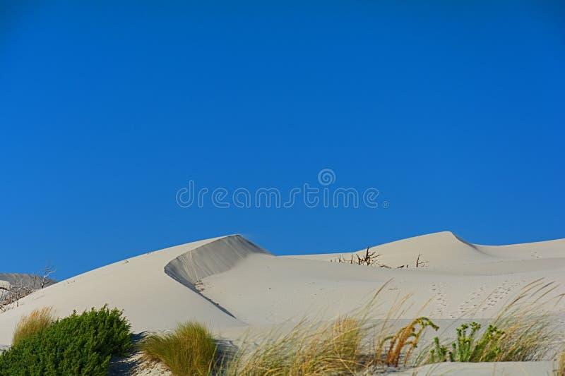Sand och dyn royaltyfria bilder