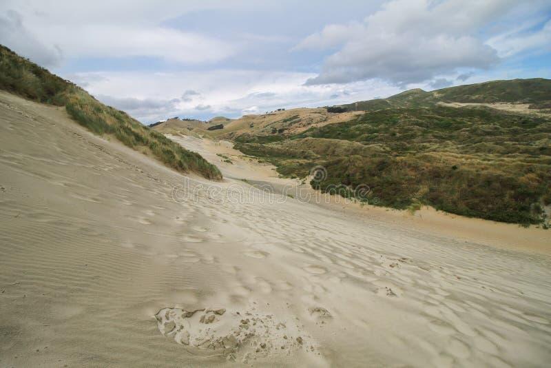 Sand- och gräsdyn på en molnig dag skapar en bakgrunds- och tapetsikt royaltyfria foton