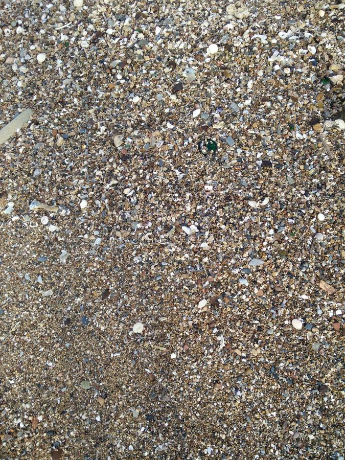Sand och skal arkivbild