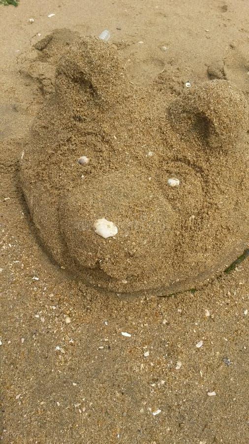 sand panda stock images