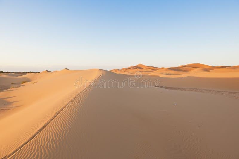 Sand pattern in Sahara royalty free stock image