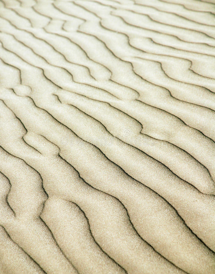 Sand ripples. A wave of ripples in the sand stock image
